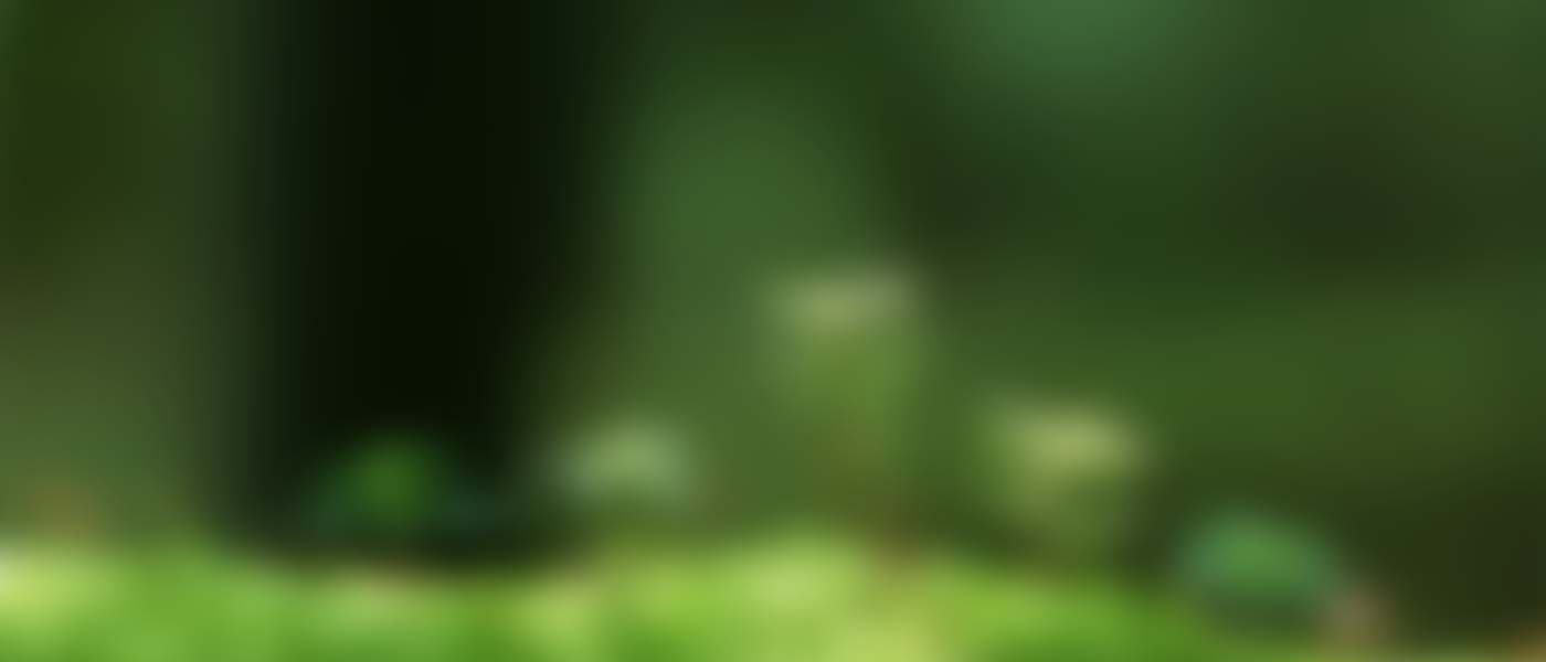 plants-blurred-slider-